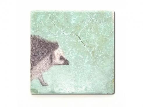 Illustrated tile - hedgehog