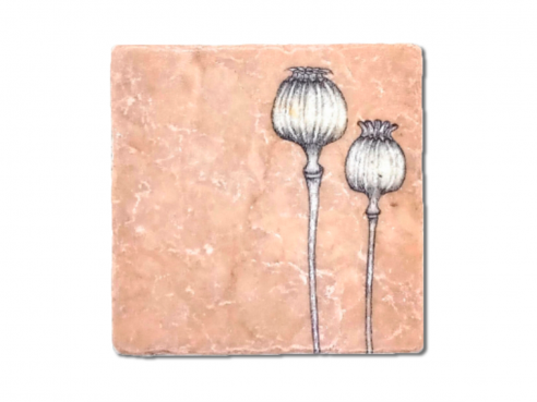 Illustrated tile - poppy seed capsules