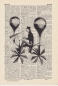 Preview: Balloon Rider