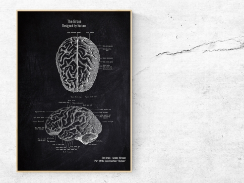 The Brain No. 2 - Patent-Style - Anatomie Poster