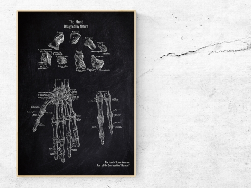 The Hand No. 2 - Patent-Style - Anatomie Poster