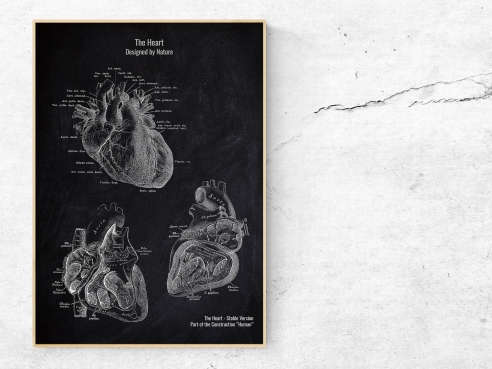 The Heart No. 2 - Patent-Style - Anatomie Poster
