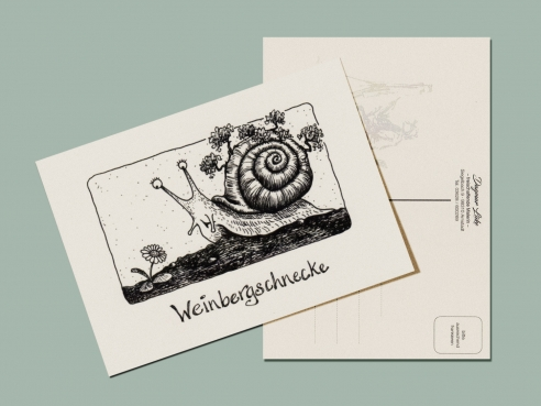 Postcard - Vineyard snail