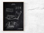 The Teeth - Patent-Style - Anatomie Poster